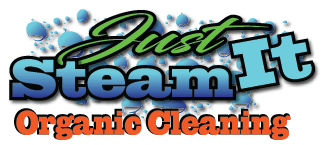 San Antonio Floor Cleaners | Tile, Grout, Upholstery & Carpet Cleaners Logo